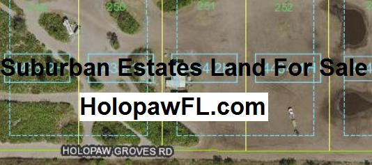 Suburban Estates Holopaw Florida Recreational Land For Sale