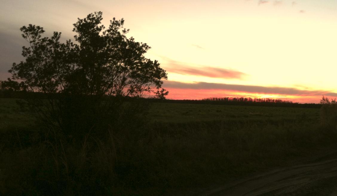 Suburban Estates Lots For Sale Holopaw Florida Land