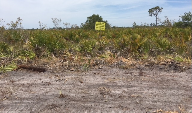 Florida Recreational Camp Lots For Sale Holopaw Suburban Estates 4x4 hunt