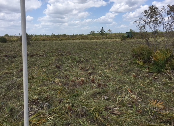 Holopaw Florida Recreational Lots For Sale ATV Hunt Camp FL Lot Suburban Estates
