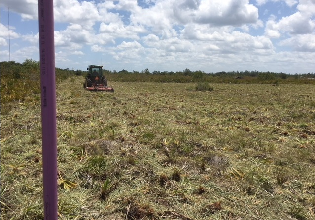 Suburban Estates Holopaw Florida Recreational Land Lot For Sale Atv Hunt Camp