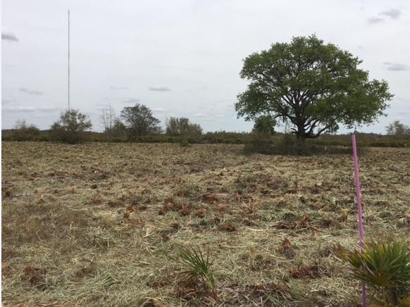 Suburban Estates Holopaw Osceola County Florida Camp Lot ATV Land Hunt