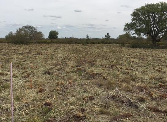 Suburban Estates Holopaw Osceola County Florida Camp Lot ATV Land