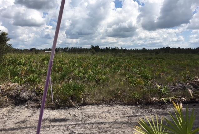 Suburban Estates Holopaw Florida Land For Sale 4x4 atv lot