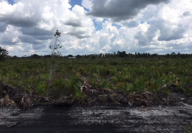 Suburban Estates Holopaw Florida Recreational atv land hunt camp 4x4