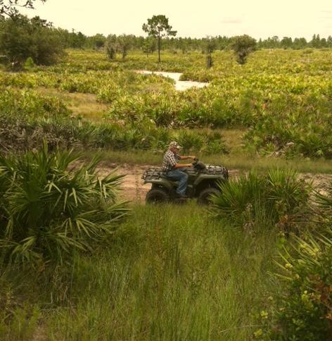 Suburban Estates Holopaw Florida Land for Sale